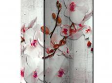 Paraván - Concrete Orchid [Room Dividers]